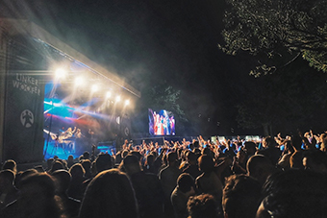 Linkerwoofer uses Microsoft Teams for efficient festival organisation